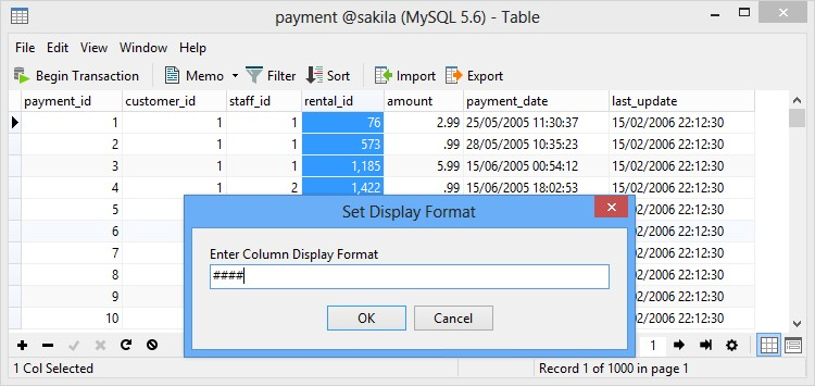 Can I adjust the Display Format for particular column? – Navicat
